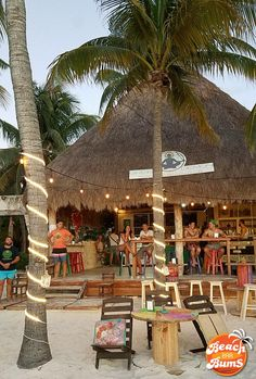 The Green Demon Beach Club, a beach bar located on the north end of Playa Norte on Isla Mujeres, offers its customers healthy options not normally found on your typical beach bar menu. Tulum, Khao Lak Beach, Lamai Beach, Beach At Night, Beach Cafe, Outdoor Restaurant, Beach Bungalows, Beach Shack, Tropical Beaches