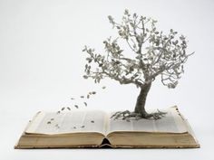I love books more than movies because I feel more involved with the story and characters.