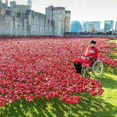 remembrance day uk tower of london