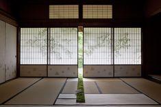 ギャラリー | 花匠 佐々木直喜 Daniel Ost, Ikebana, Japanese Art, Flower Designs, Bonsai, Flower Arrangements, Design Inspiration, Flowers, Plants