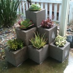 Cinder Block Succulent Garden, like structure so instead may try with Saltillo tile planters or square terra cotta pots