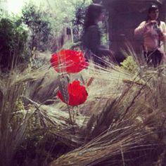 macapomu foto Instagram Posts, Painting, Art, Photos, Art Background, Painting Art, Kunst, Paintings, Performing Arts