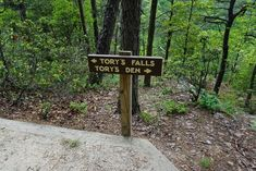 But did you know there are 18 miles of hiking trails in this state park, including one that leads to a cave? North Carolina Hiking, North Carolina Attractions, Visit North Carolina, North Carolina Vacations, North Carolina Mountains, Mitchell Falls, North Caroline, Back Road, Blue Ridge Mountains