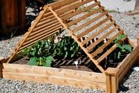 """Simple shade frames build from 1""""x2""""s with hinges make a great spot for growing veggies in full sun."""