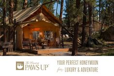 Holy sweetness, R for reals.    Spend Your Honeymoon Glamping at The Resort at Paws Up