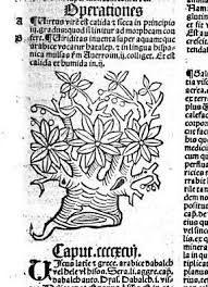 hortus sanitatis - Szukaj w Google