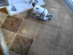 Acid Stained Concrete Slab Floors Scored Cut with Checkerboard Pattern