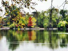 brilliant autumn - Tata Hungary Cseke Lake Hungary, Autumn, River, Photos, Outdoor, Outdoors, Pictures, Fall Season, Fall