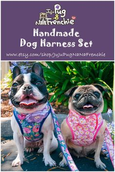 15 Awesome Dog Harness Medium No Pull Dog Harnesses And Leashes For Medium Dogs Boy Dog, Girl And Dog, Pet Dogs, Dogs And Puppies, Dog Years, Dog Halloween, Pug Love, Large Dogs, Small Dogs
