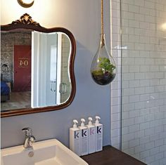 We sell these hanging terrariums at Woodstock 1806 N. 3rd St. Monroe, LA 71201. CALL US AT 318-340-9830