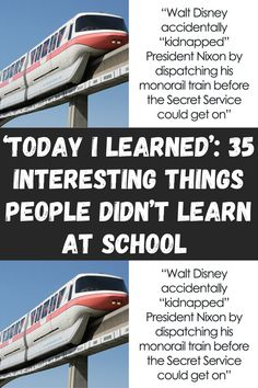 'Today I Learned': 35 Interesting Things People Didn't Learn At School (New Pics) Clean Funny Jokes, Funny Jokes To Tell, Crazy Funny Memes, Funny Laugh, Wtf Funny, Funny Facts, Hilarious, Laughing Jokes, Laughing So Hard