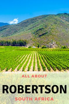 A full guide to why you should want to visit Robertson and Montagu near Cape Town, South Africa as well as things to do in Robertson, things to do in Montagu and information about visiting this region with kids Morocco Travel, Africa Travel, Travel With Kids, Family Travel, Stuff To Do, Things To Do, Where To Go, Adventure Travel, South Africa