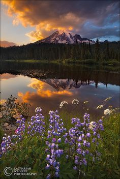 Reflection Lake Sunset, Mount Rainier, Washington