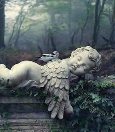 Baby angel / cherub statue in a cemetery Cemetery Angels, Cemetery Statues, Cemetery Art, Statue Ange, I Believe In Angels, Ange Demon, Garden Angels, Angels Among Us, Angel Art