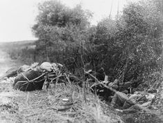 American soldier and his mules lying dead in a dirch by the road