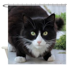 """Black and White Cat Shower Curtain Comes in one size: 69"""" x 70"""" 100% softened polyester Standard size with 12 stitch-enforced eyelets for hanging Shower rod, rings, or liner not included  #cat #shower #curtain #cats #feline #animal #pet #homedecor #bathroom"""