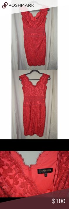 Amazing Tadashi Shoji Lace Dress!! This dress is absolutely beautiful! It's a shame it doesn't fit me, but it can be yours!! It will come freshly dry cleaned and ready to wear! I consider all offers. Tadashi Shoji Dresses Midi