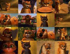 Pet Corner, Shrek, Orphan, Dreamworks, Disney Pixar, Scooby Doo, Teddy Bear, Pets, Painting