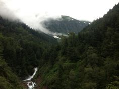 ecologyst (formerly sitka) - different name, same commitment. Alaskan Homes, Tongass National Forest, Sitka Spruce, Camping Life, Photo Essay, Instagram Feed, Acre, Woods, Mountain