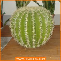custom fiberglass mushroom,fiberglass plant for decoration, View fiberglass mushroom, SOARPEAN Product Details from Xiamen Soarpean FRP Co., Ltd. on Alibaba.com