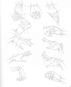 hands from various perspectives with guidelines