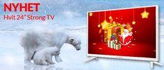 """Nyhet og juletilbud! 24"""" STRONG TV med DVB-T/C/S2 (trippeltuner)   Satelittservice tilbyr bla. HDTV, DVD, hjemmekino, parabol, data, satelittutstyr Dinosaur Stuffed Animal, Tv, Animals, Photo Illustration, Animales, Animaux, Tvs, Animal, Animais"""