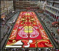 See the Magnificent Brussel's Floral Carpet in all its beauty: http://pinpple.com/post/6399  #brusselsfloralcarpet
