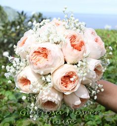 Peach David Austin Roses with white baby's breath and silver dust