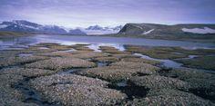 "Arctic Methane ""Burp"": A Climate Catastrophe with $60 Trillion Pricetag | Common Dreams"