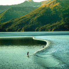 Surf in Anchorage, Alaska No Wave, Kitesurfing, Trekking, National Geographic Adventure, Sports Nautiques, Water Surfing, Surfing Photos, Sup Surf, Surf Trip