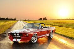 Shelby GT500CR Built by Classic Recreations ® - Content