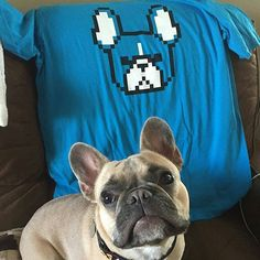 8-bit Frenchies ✔ Available in multiple colors and cuts. See them all and grab one at GIVEAFLUFF.COM  Photo: @henryandpetey
