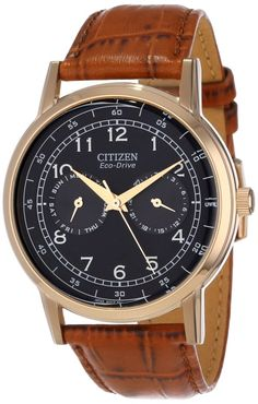 Citizen men's watches : Citizen Men's AO9003-08E Stainless Steel Eco-Drive Watch with Leather Band