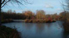 Thorney lakes