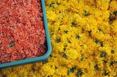 At the market, Pondicherry, India