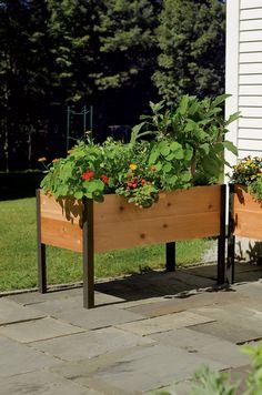 2' x 4' Elevated Cedar Planter Box