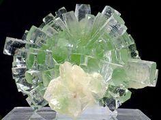 Crystals Gemstones Rocks, Gemstones Minerals, Gems Minerals Crystals Rocks, Crystals Minerals, Gems Rocks Minerals, Apophyllite Crystals, Minerals Rocks, ...