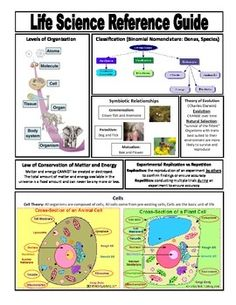 FREE RESOURCE: A quick reference guide for students covering the basic concepts in middle school life science. I like to print a class set in color and then laminate them for my students to use throughout the school year. I have also given the students a copy of this reference sheet to keep in their science notebooks/journals.