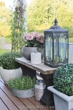 Decoration in the large flower pots and a lantern .-Dekoration im Große Blumentöpfe und eine Laterne # dekorieren… Decoration in Large flower pots and a lantern # Pots # decorate … – home accessories # flower pots - Large Flower Pots, Outdoor Gardens, Small Gardens, Rustic Outdoor, Outdoor Benches, Rustic Patio, Fake Flowers, Silk Flowers, Garden Projects