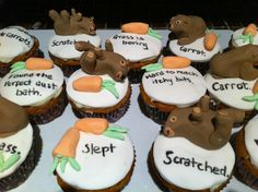 Wombat cupcakes
