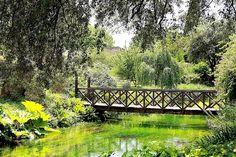 The Garden of Ninfa, Lazio, Italy.