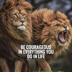 Be courageous  from one of my favourite feel good pages @mrgoodlife.co  @mrgoodlife.co