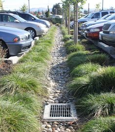the swale via a pipe. Above, grass and cobbled swale between parking ...