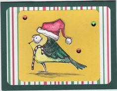 Bird Crazy Christmas
