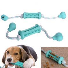 Dog Dental Care Toothbrush Dog teeth, Dog boarding near