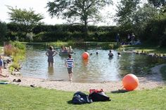 Swimming Pond Conversions from Ponds Lakes - Gardening Dreams