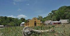 osCurve   Contactos : El Salado, 15 años después de la masacre