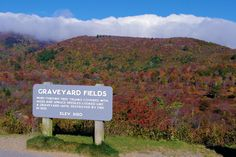 Graveyard Fields with fall color today on the Blue Ridge Parkway in North Carolina
