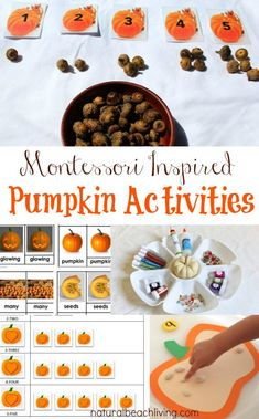 montessori-pumpkin-activities Montessori Preschool, Fall Preschool, Montessori Bed, Autumn Activities, Preschool Activities, Time Activities, Pumpkin Crafts, Pumpkin Ideas, Fall Crafts
