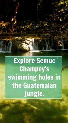 Explore Guatemala's deep blue swimming holes of Semuc Champey. Dive from its waterfalls surrounded by jungle and howler monkeys.:
